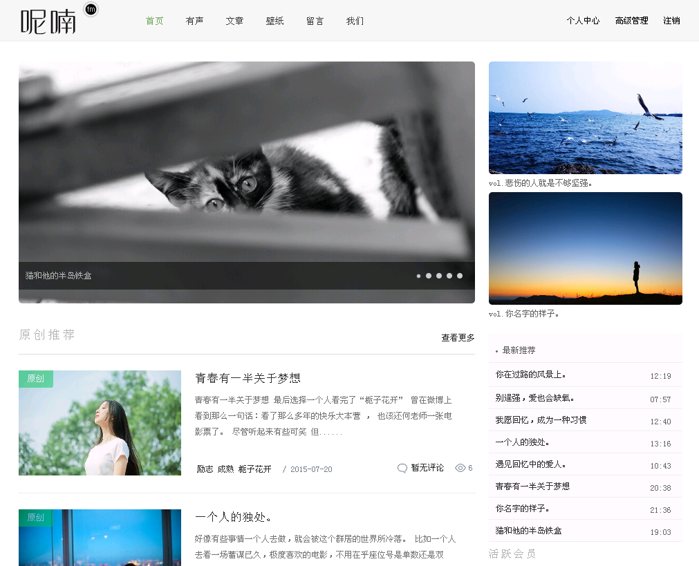 [WP酷首发]Ninanfm - 简灰清新WordPress博客主题
