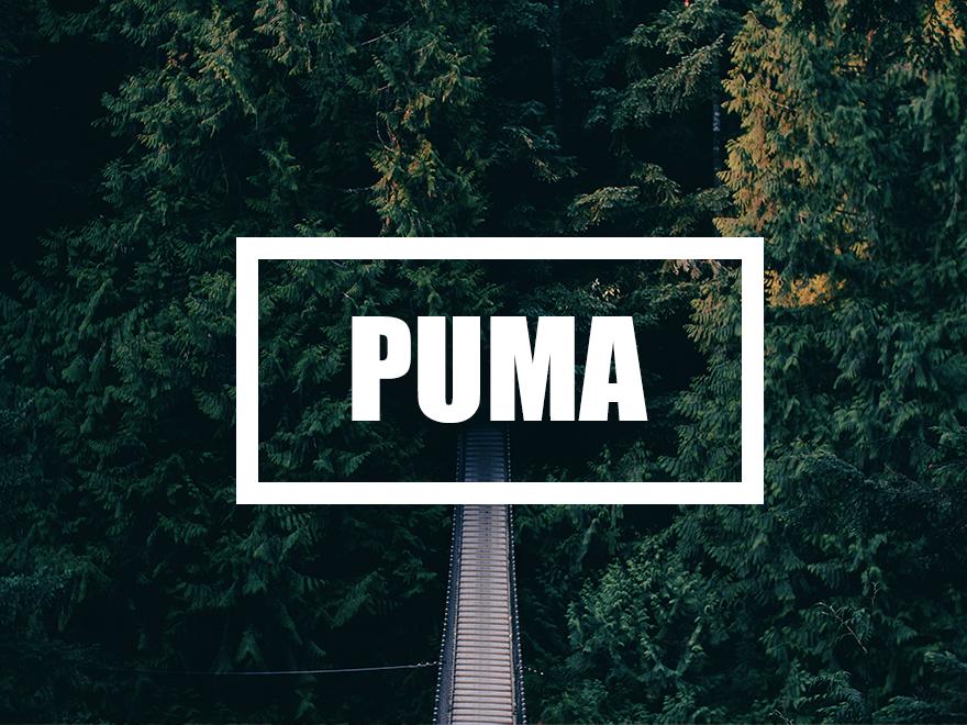 Puma - 单栏超简 WordPress 博客主题